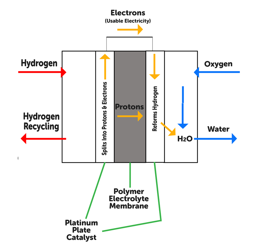 Hydrogen Car | Diagram of a Hydrogen Fuel Cell