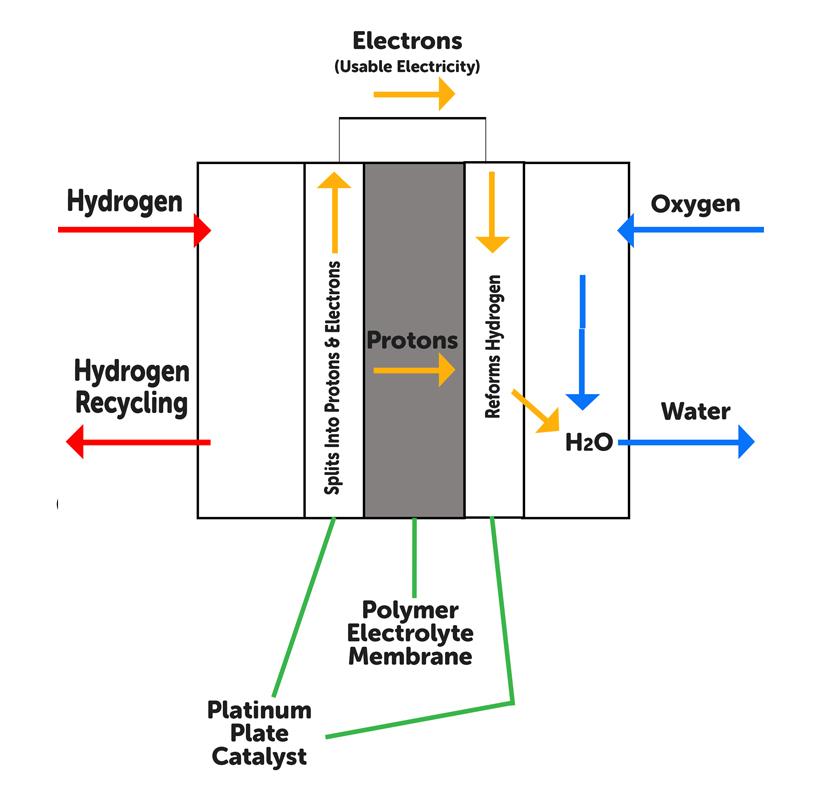 Hydrogen Car | Diagram of a Hydrogen Fuel Cell