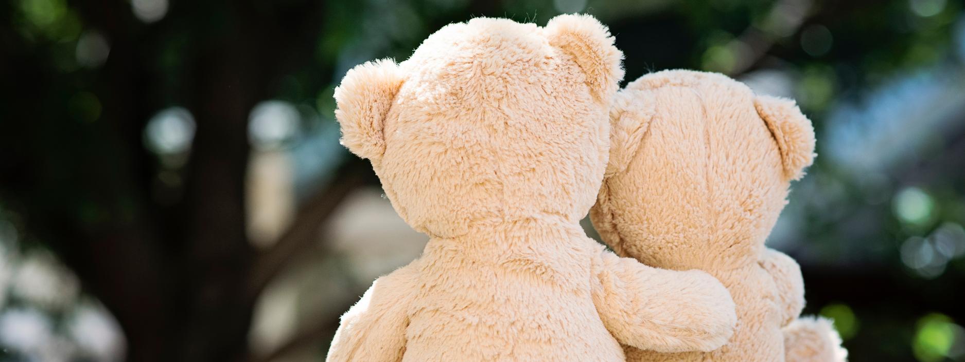 Teddy bear cuddle